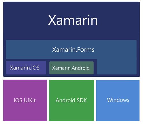 Xamarin Guidance - Lexicon Systems